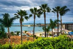 Palmträd och sikt av Stilla havet i Corona del Mar Fotografering för Bildbyråer
