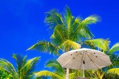 Palmträd och solparaplyer på en tropisk strand, himlen i Arkivfoto