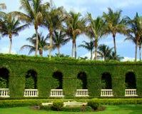 Palmträd och springbrunnen - arbeta i trädgården i Palm Beach, Florida Fotografering för Bildbyråer