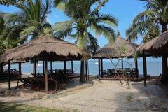 Palmträd och sunbeds på den tropiska stranden Fotografering för Bildbyråer