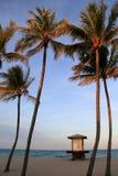 Palmträd och tecknet som visar stranden, betingar, Miami, Florida, 2914 Arkivfoto
