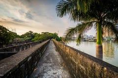 Palmträd och väggar längs den Pasig floden, på fortSantiago, Int Arkivbilder