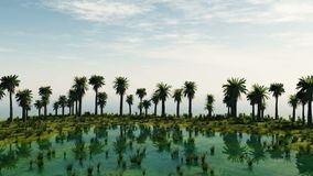 Palmträd på den laguna ön solig dag royaltyfri illustrationer