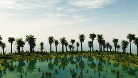 Palmträd på den laguna ön solig dag vektor illustrationer