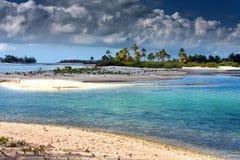 Palmträd på kusten under stormhimlen Arkivfoto