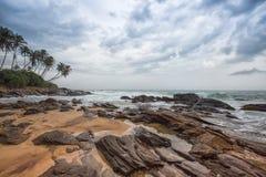 Palmträd på kustlinjen av Galle, Sri Lanka Royaltyfria Foton
