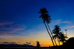 Palmträd på solnedgången på Pan Wa Royaltyfri Foto