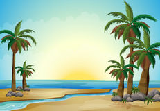 Palmträd på stranden vektor illustrationer