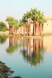 Palmträd reflekterade i vatten i Marocko Fotografering för Bildbyråer