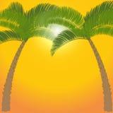 Palmträd två på orange bakgrund illustration vektor illustrationer