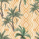 Palmträdbakgrund Royaltyfri Foto