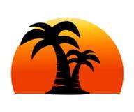 Palmträdbild vektor illustrationer