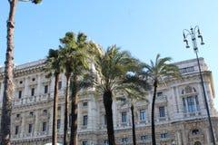 Palmträdet parkerar i Rome royaltyfri bild