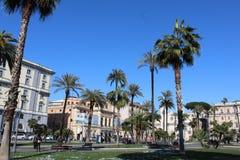 Palmträdet parkerar i Rome Arkivfoto
