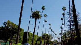 Palmträdgränderna i Beverly Hills - LOS ANGELES, USA - APRIL 1, 2019 stock video