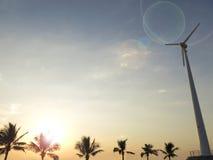 Palmträdkontur med vindturbinen Royaltyfri Bild