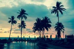 Palmträdkonturer på en tropisk havsstrand royaltyfri foto