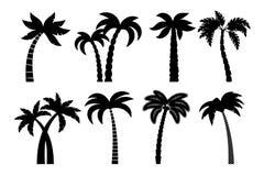 Palmträdsvartuppsättning vektor illustrationer