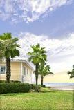 Palmträdträdgård nära sikten för hav och för blå himmel Arkivbilder