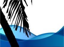 palmträdvektor Royaltyfria Foton