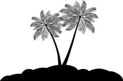 palmträdvektor Arkivfoto