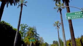 Palmtr?den av Beverly Hills - loppfotografi lager videofilmer
