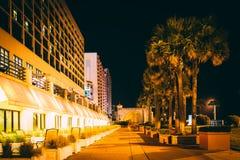 Palmträd och hotell på natten, i Daytona Beach, Florida Royaltyfri Foto