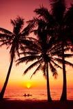 Palmträd silhouette på solnedgången tropisk beach Arkivfoto