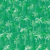 Palmträdgräsplan Arkivfoton