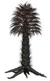Palmtree, 3D palm - geef terug Stock Afbeeldingen