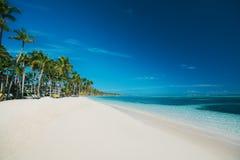 Palmtree et plage tropicale La république dominicaine photos stock