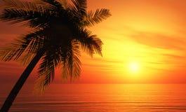 Palmtree för illustration 3D solnedgång Royaltyfria Foton