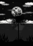 Palmtree In the Moonlight on Tropical Island royalty free stock photos