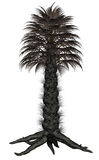 Palmtree, palm tree - 3D render Stock Images