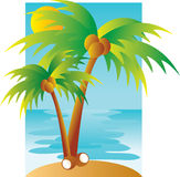 Palmtree scene Royalty Free Stock Photo