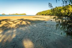 Palmtree shadows on the beach in Australia stock photography