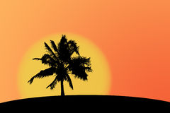 Palmtree silhouette. Silhouette of a palmtree against a sunset sky stock illustration