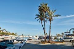 Palmtrees και γιοτ Στοκ φωτογραφία με δικαίωμα ελεύθερης χρήσης