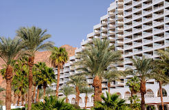 Palmtrees and Hotel. Palmtrees against the background of the white hotel and mountains in Eilat, Israel Royalty Free Stock Photo