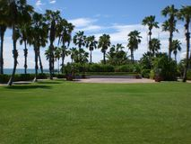 Palmtrees på Aruba Royaltyfri Fotografi