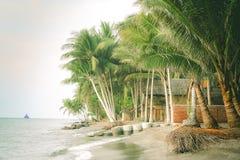 Palmtrees sulla linea costiera di Lombok Fotografie Stock