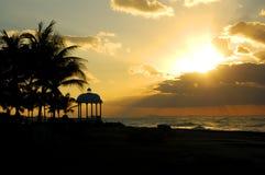 palmtreessolnedgångvatten Royaltyfri Foto