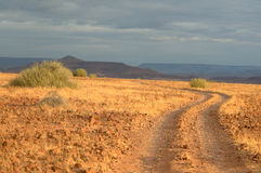 palmwag 3 Намибия Стоковые Изображения RF