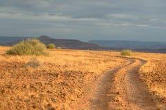 Palmwag - la Namibie (3) images libres de droits