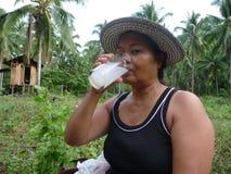 Palmwine en la granja del coco Imágenes de archivo libres de regalías