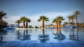 Palmy błękitne wody luksusu ogród Egipt zdjęcia royalty free