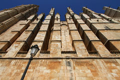 Palmy De Majorca's katedra Obraz Royalty Free