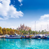 Palmy de Mallorca portu marina Majorca katedra Zdjęcia Royalty Free