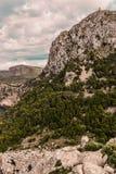 Palmy de Mallorca wakacje wycieczka zdjęcia stock