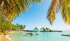 Palmy i kolorowy brzeg w Basie Du Fort wyrzuca? na brzeg zdjęcia stock